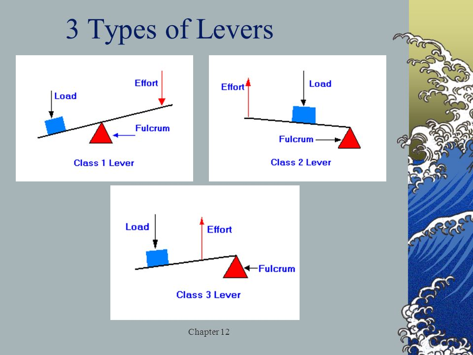 3 Types of Levers Chapter 12