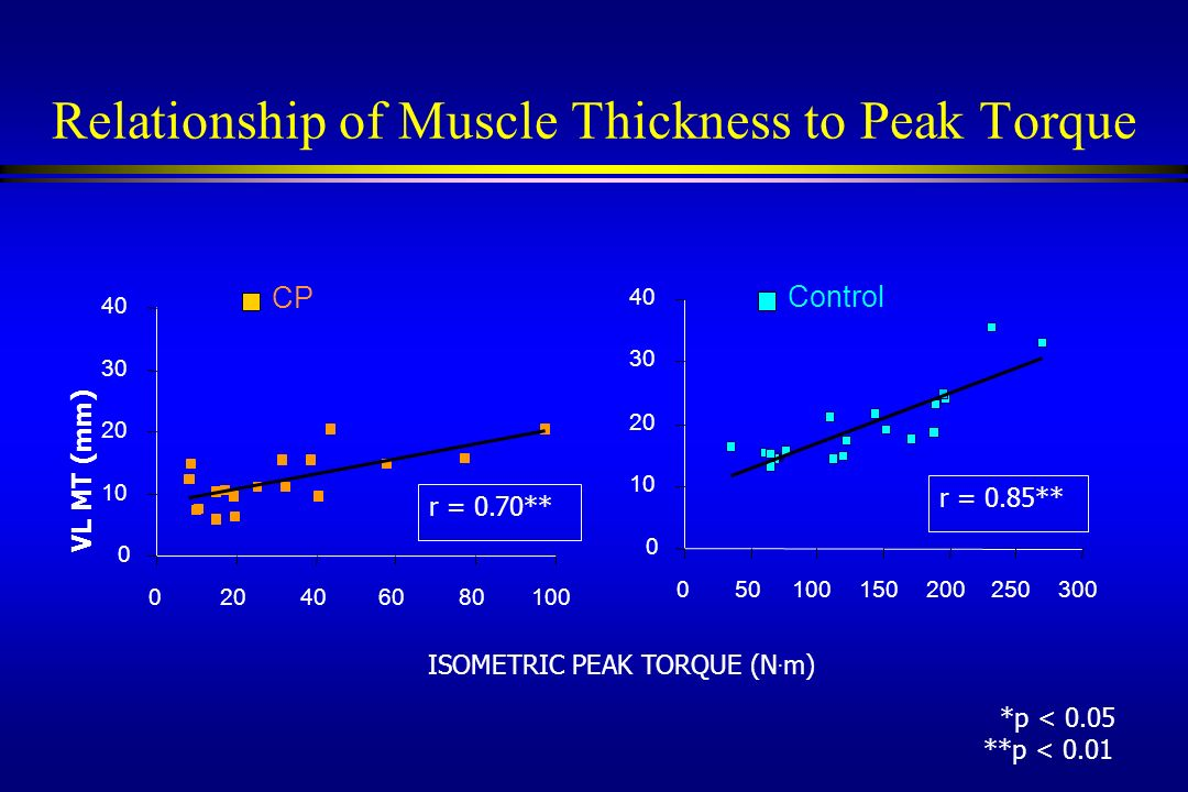 Relationship of Muscle Thickness to Peak Torque