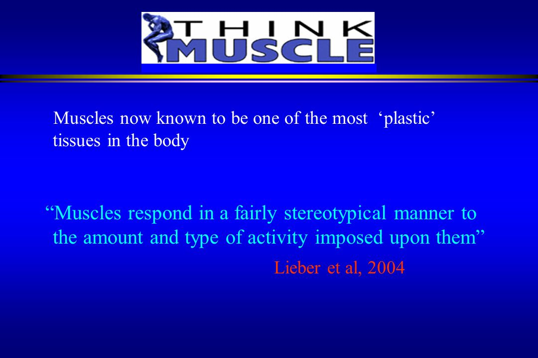 3/22/2017 Muscles now known to be one of the most 'plastic' tissues in the body.