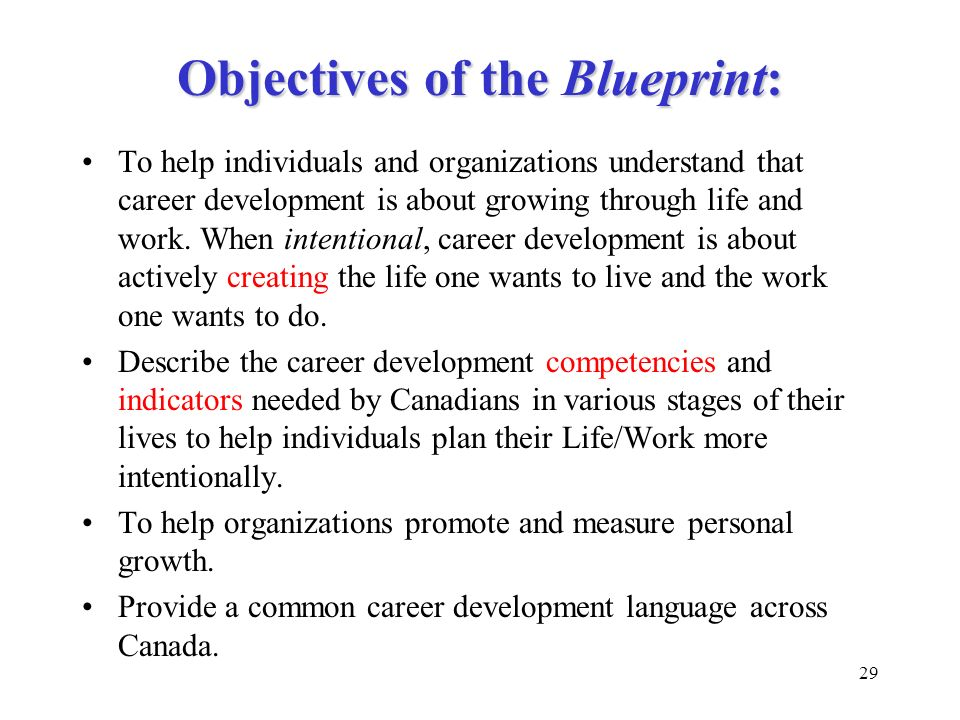 Objectives of the Blueprint: