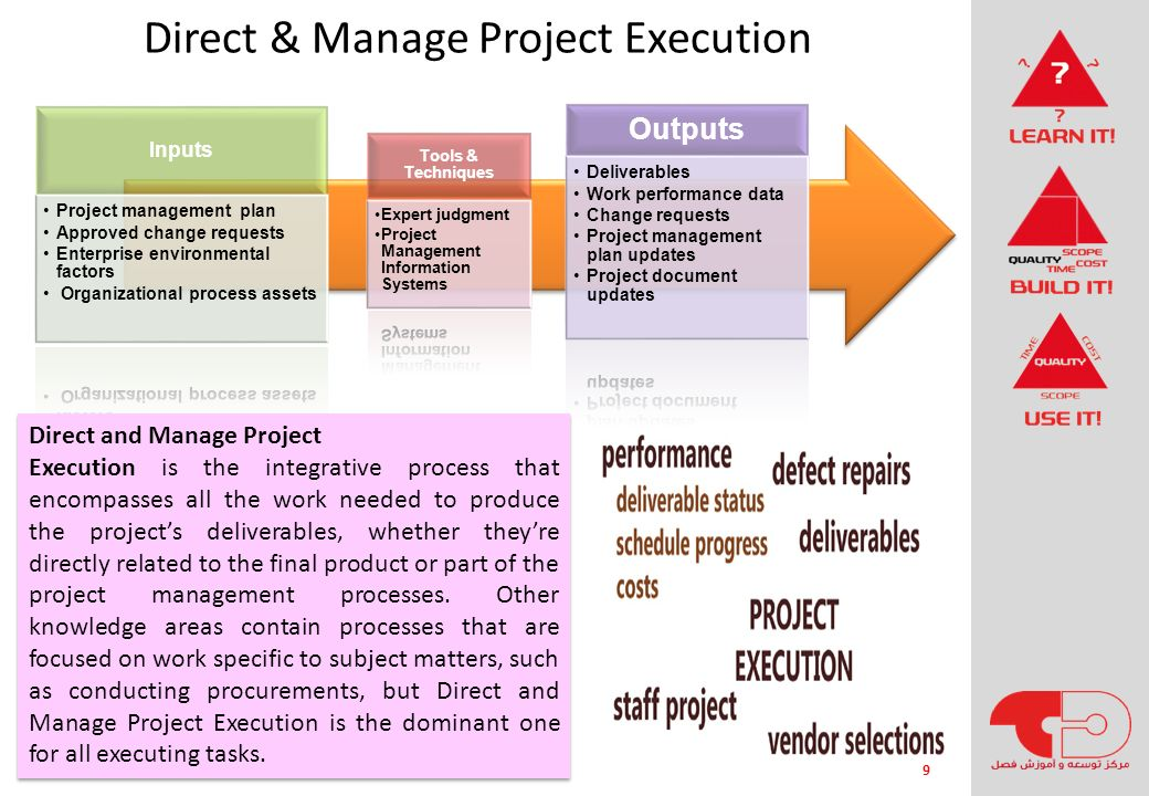 Direct & Manage Project Execution
