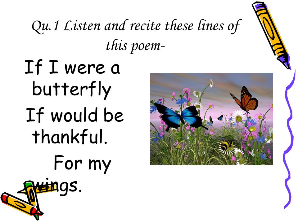if i am a butterfly