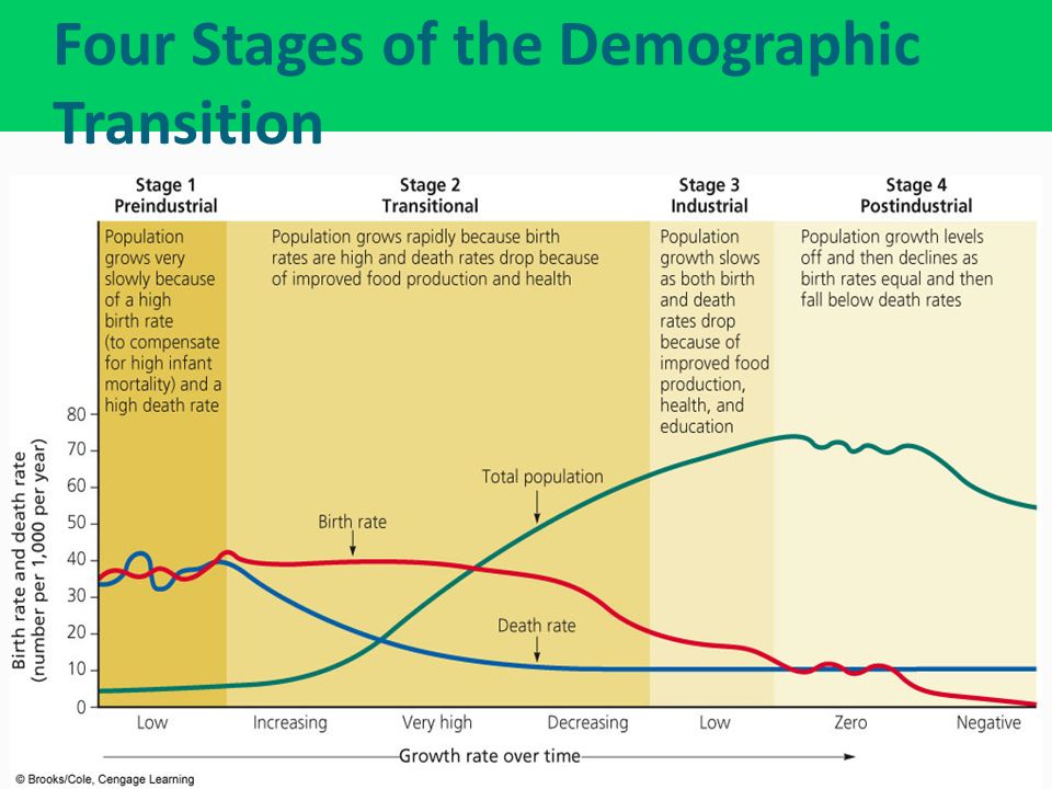 the four stages of demographic transition
