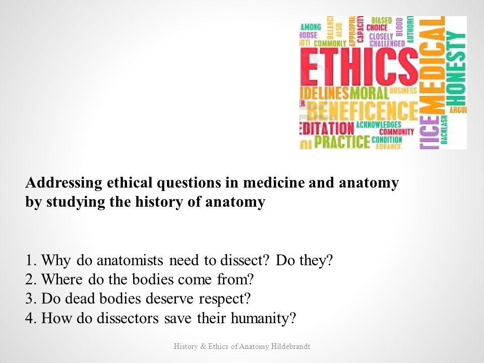 History And Ethics Of Anatomical Dissection Ppt Download
