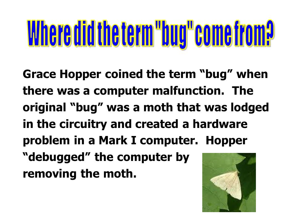where did the term computer come from