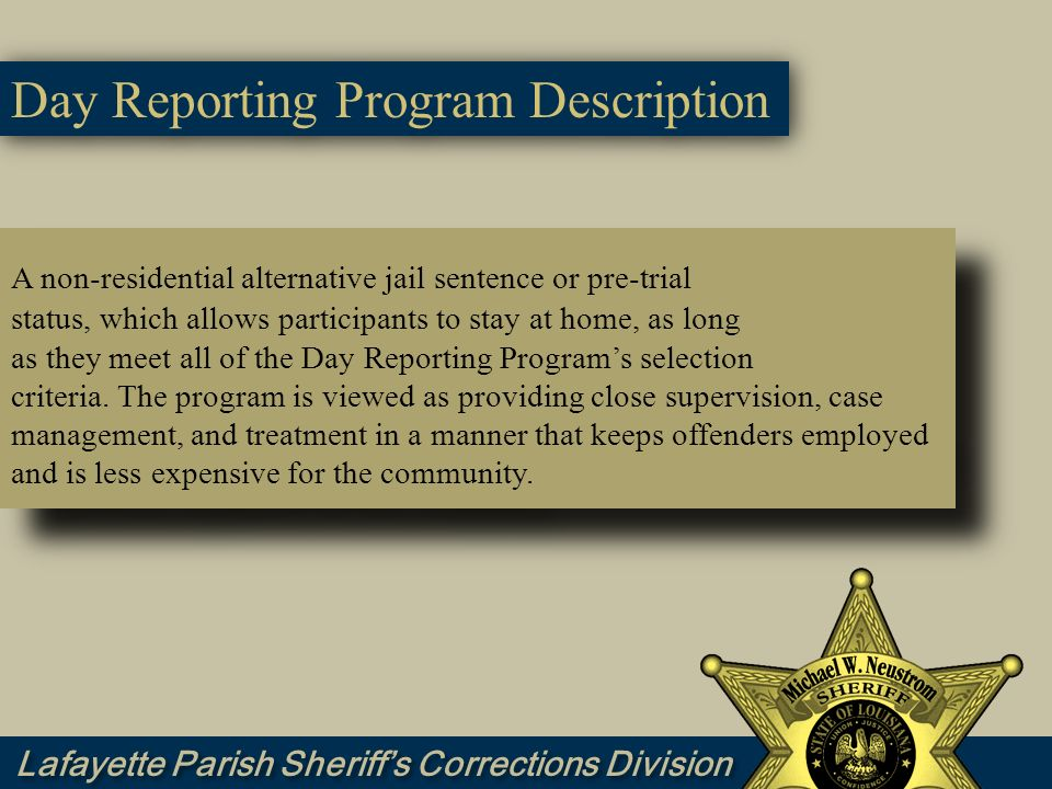 Day Reporting Program Description