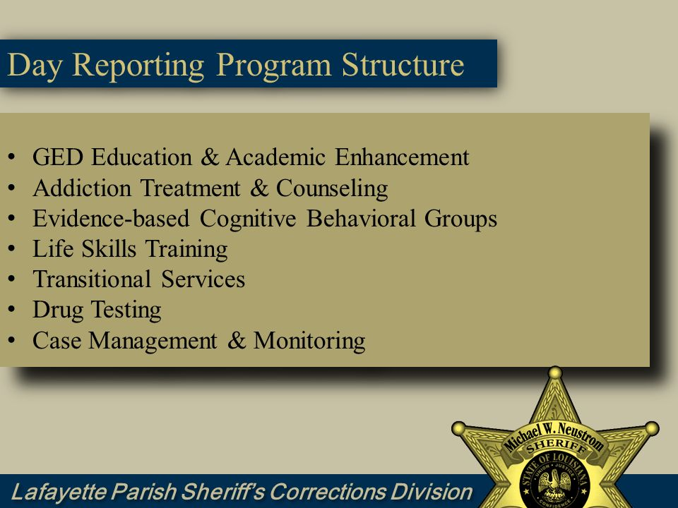 Day Reporting Program Structure