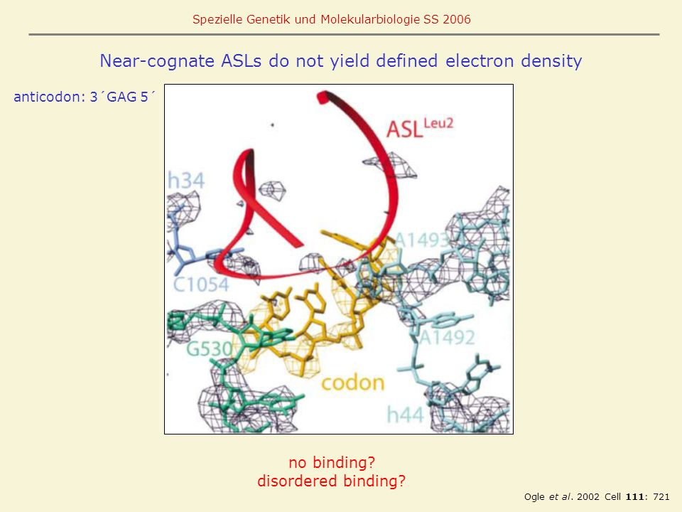 Near-cognate ASLs do not yield defined electron density