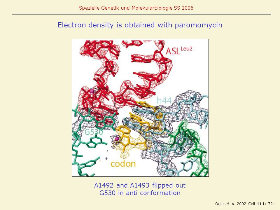 Electron density is obtained with paromomycin