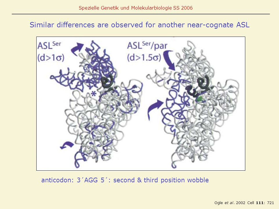 Similar differences are observed for another near-cognate ASL