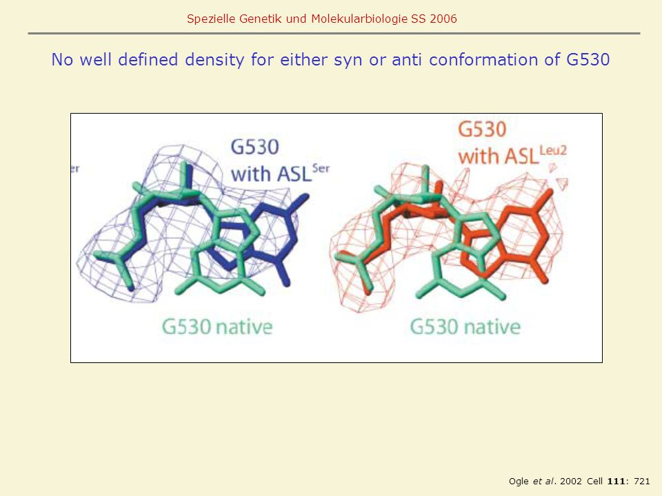 No well defined density for either syn or anti conformation of G530