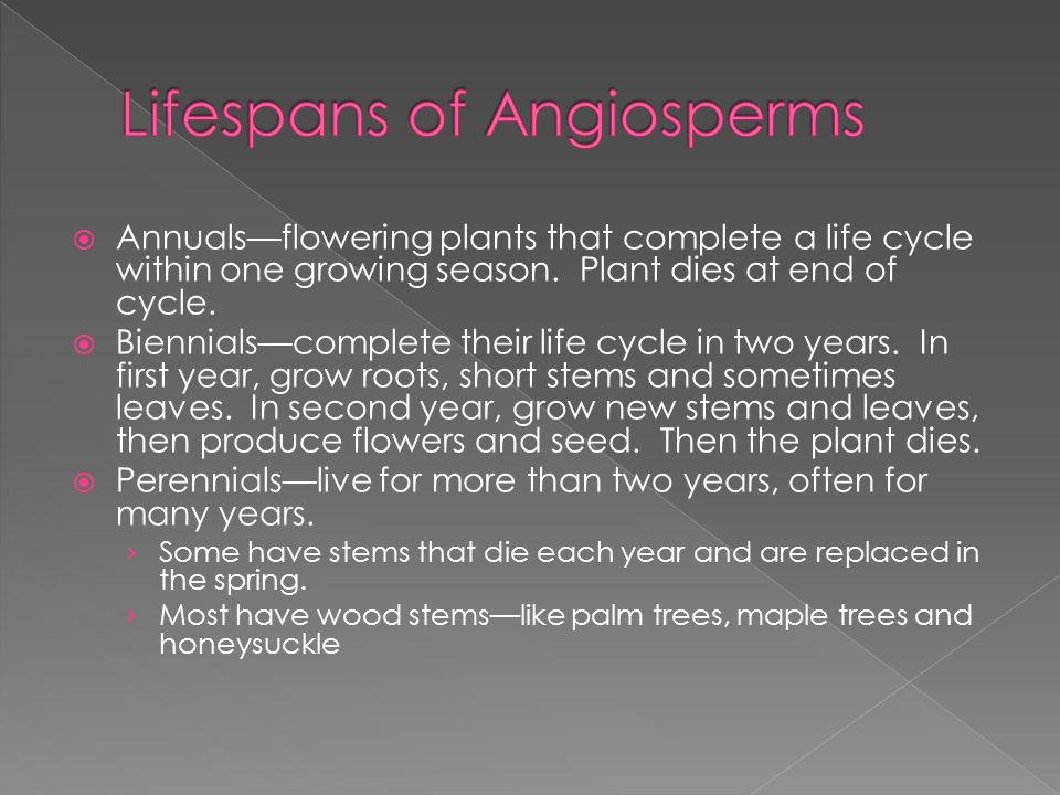 Lifespans of Angiosperms