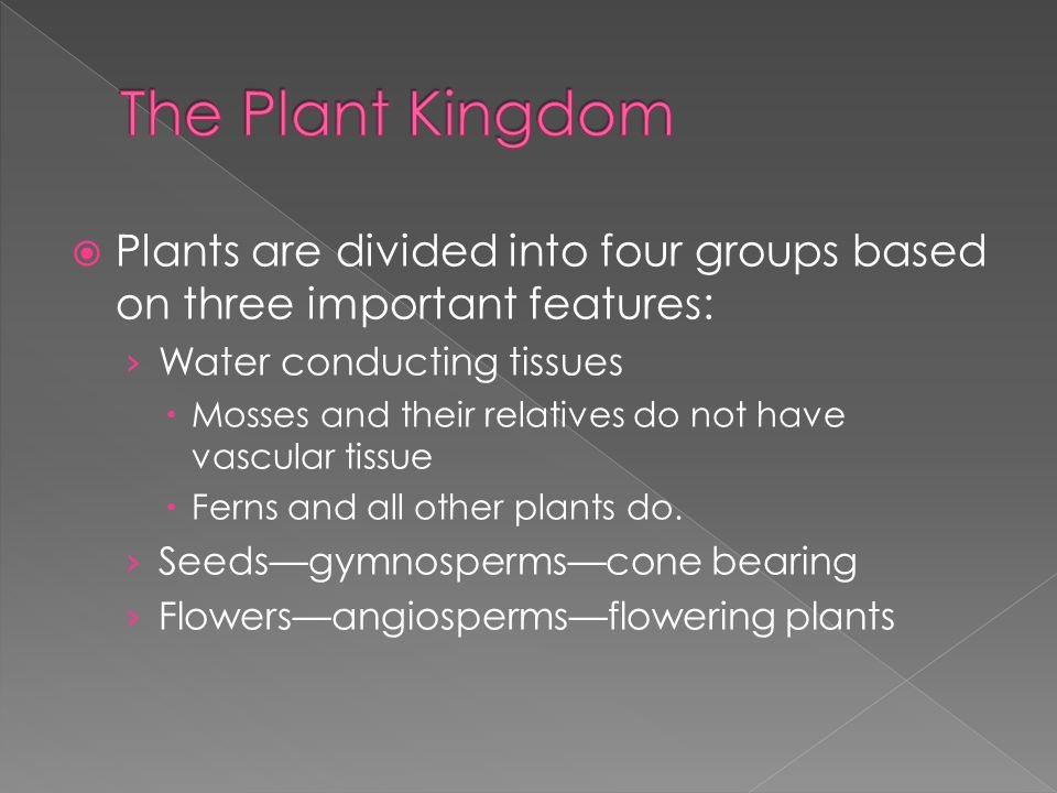 The Plant Kingdom Plants are divided into four groups based on three important features: Water conducting tissues.
