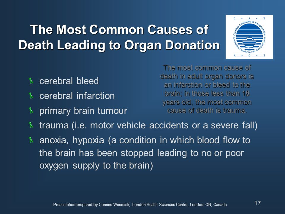 The Most Common Causes of Death Leading to Organ Donation