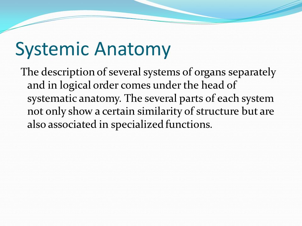 Introduction to Human Anatomy - ppt download