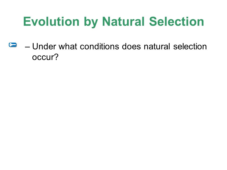 How Does Evolution Occur In Natural Selection