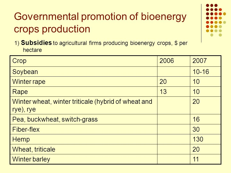 Governmental promotion of bioenergy crops production