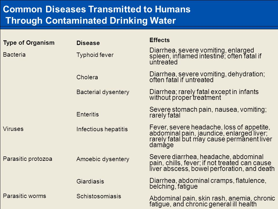 Common Diseases Transmitted to Humans
