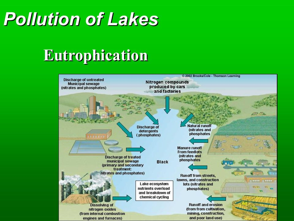 Pollution of Lakes Eutrophication