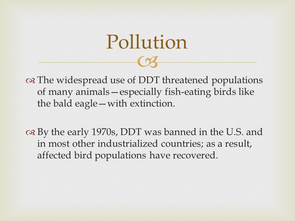 Pollution The widespread use of DDT threatened populations of many animals—especially fish-eating birds like the bald eagle—with extinction.