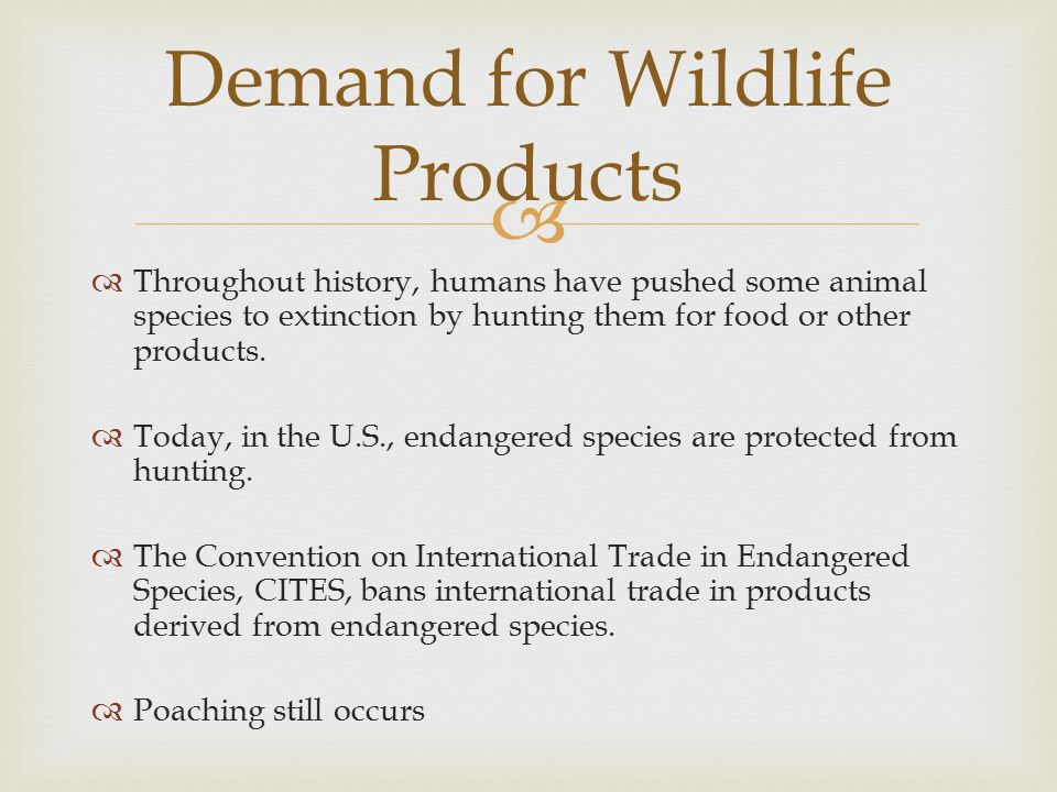 Demand for Wildlife Products