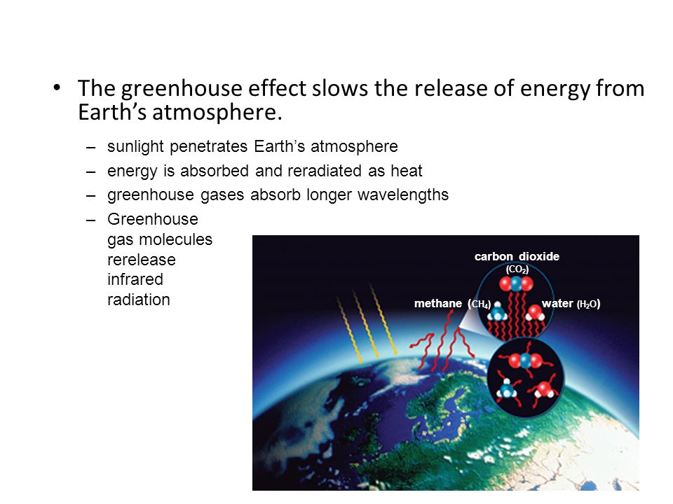 The greenhouse effect slows the release of energy from Earth's atmosphere.