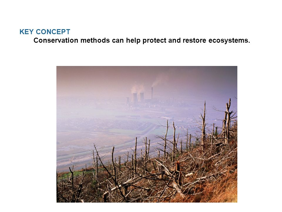 KEY CONCEPT Conservation methods can help protect and restore ecosystems.