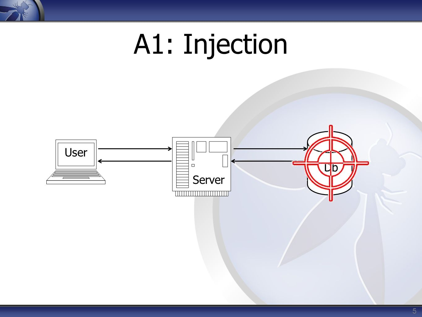 A1: Injection User Db Server