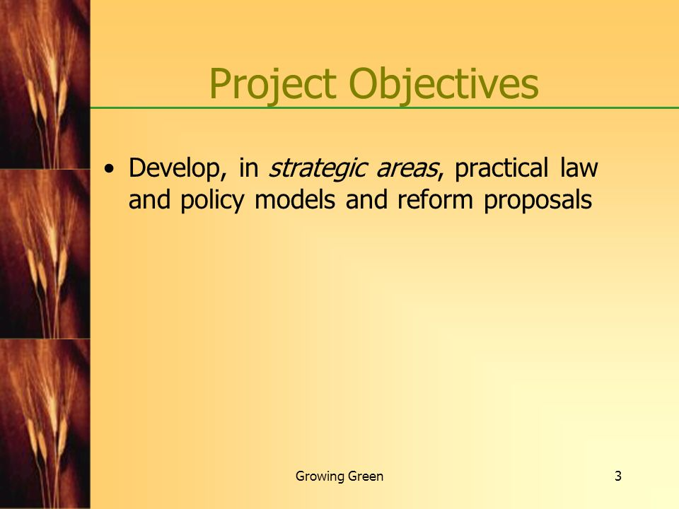 Project Objectives Develop, in strategic areas, practical law and policy models and reform proposals.