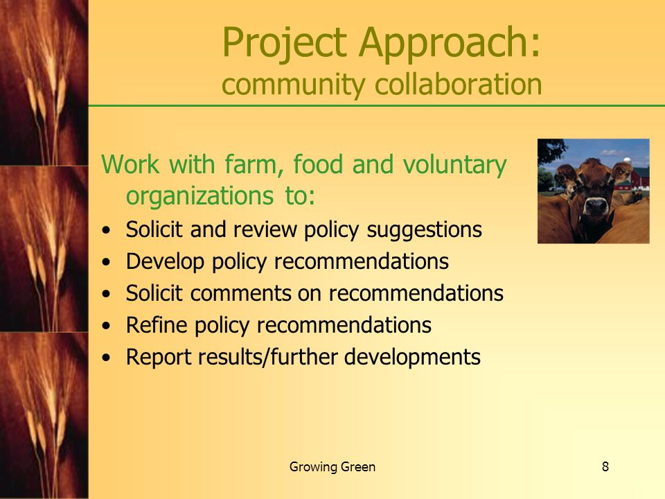 Project Approach: community collaboration