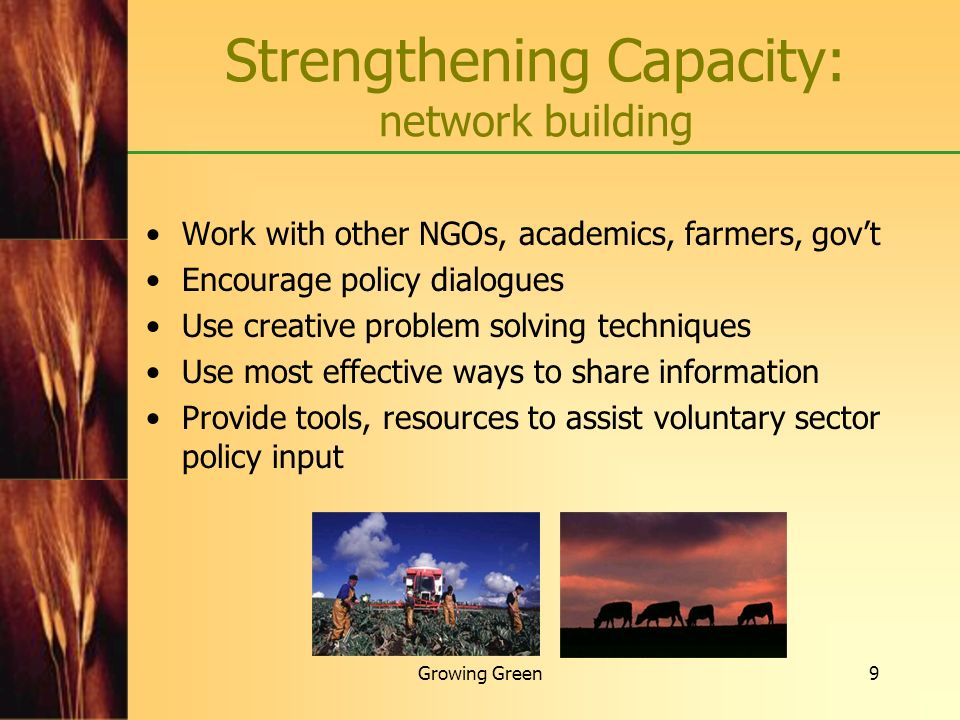 Strengthening Capacity: network building