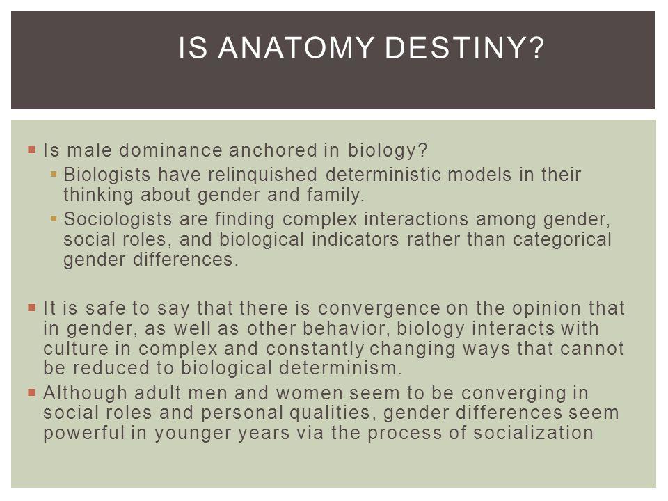 Gender Roles Foundation For Intimacy Ppt Video Online Download