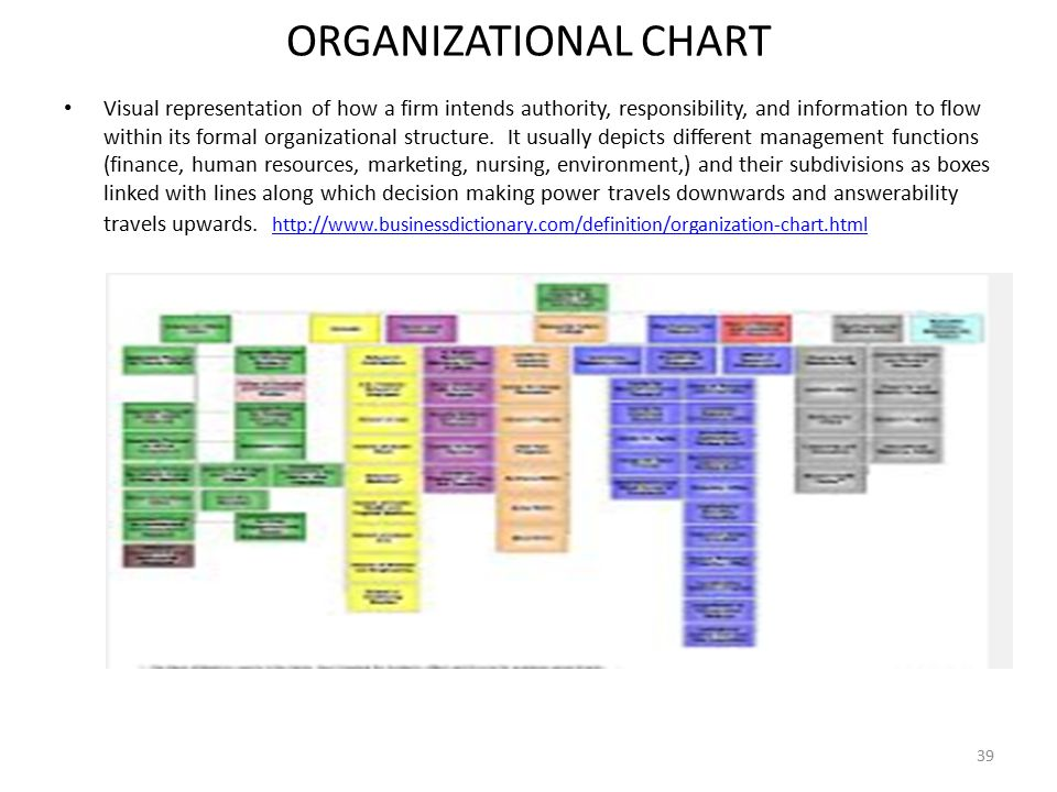 ORGANIZATIONAL+CHART empowering nurses to lead ppt download