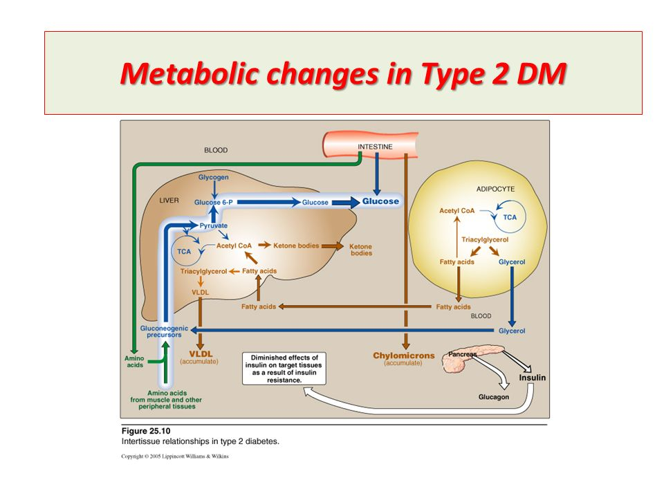 Metabolic changes in Type 2 DM