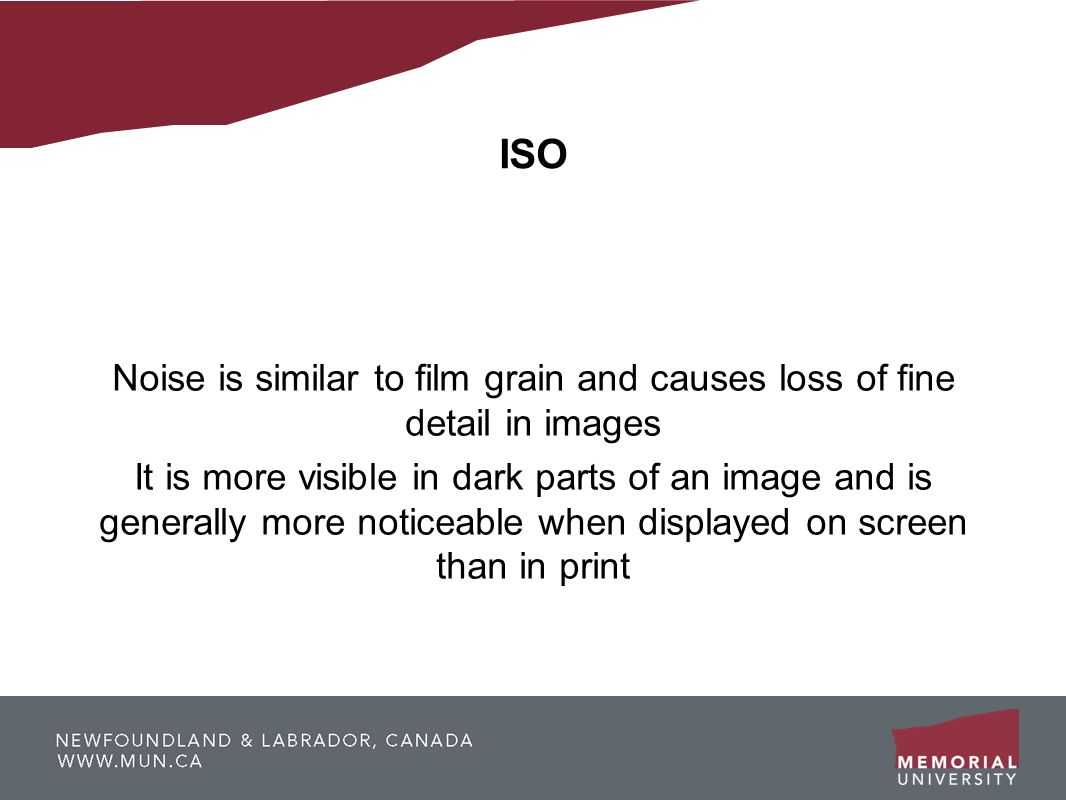 ISO Noise is similar to film grain and causes loss of fine detail in images.