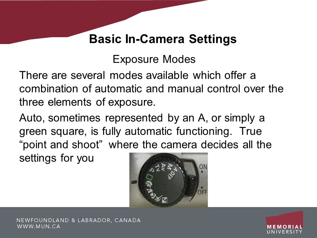 Basic In-Camera Settings