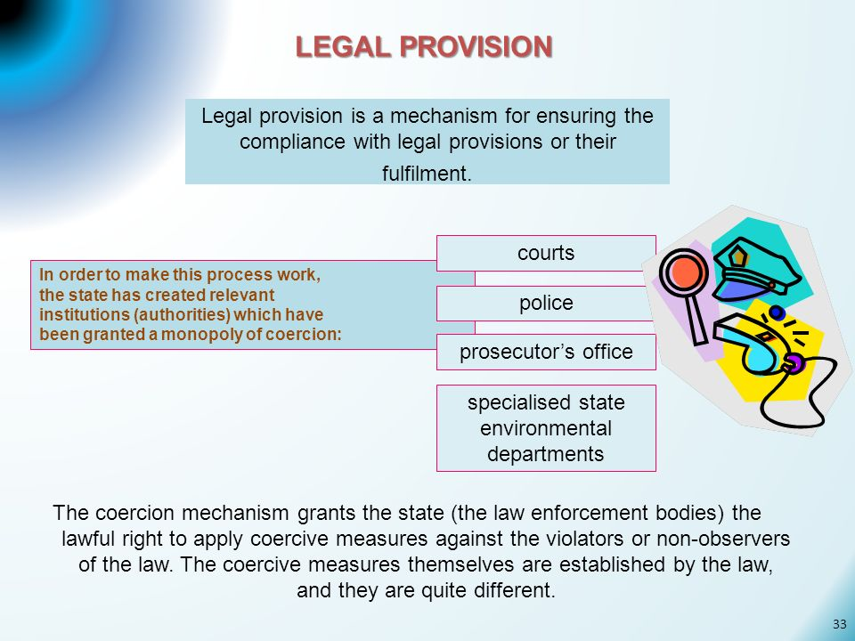 LEGAL PROVISION Legal provision is a mechanism for ensuring the