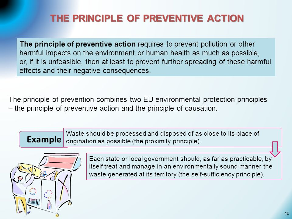 THE PRINCIPLE OF PREVENTIVE ACTION