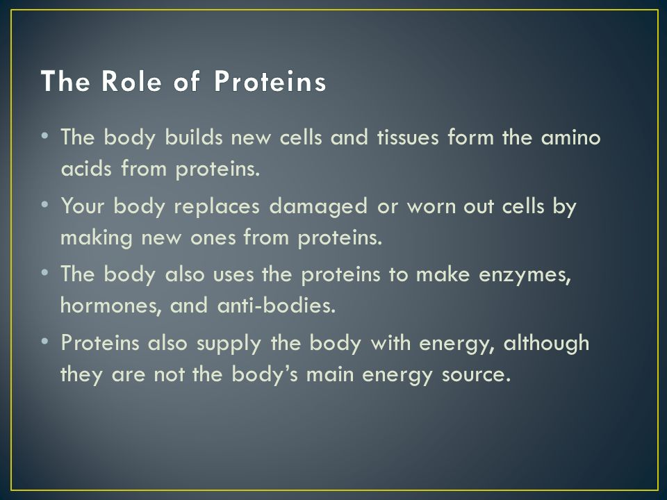 The Role of Proteins The body builds new cells and tissues form the amino acids from proteins.
