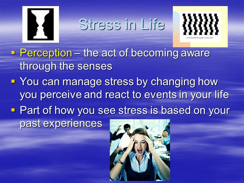Stress in Life Perception – the act of becoming aware through the senses.