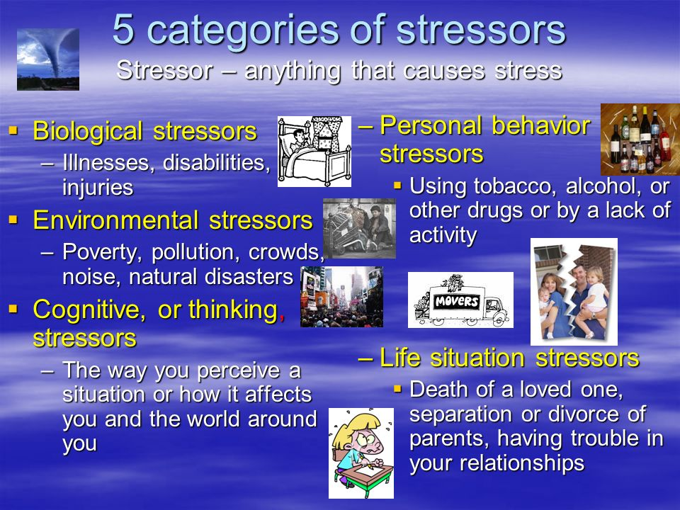 5 categories of stressors Stressor – anything that causes stress