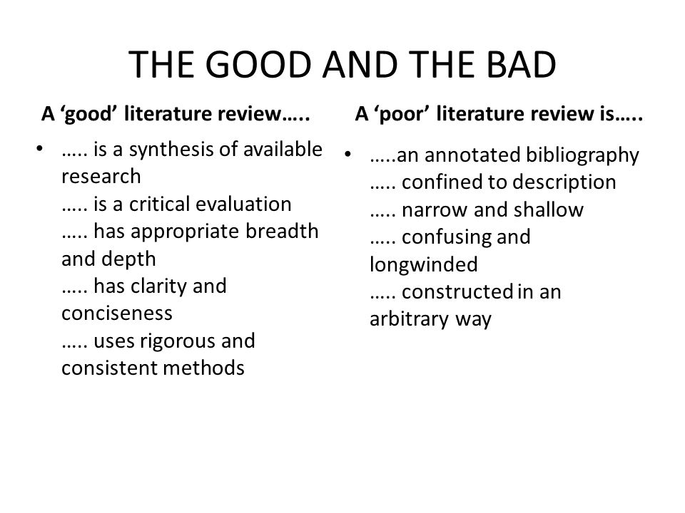 a good literature review example