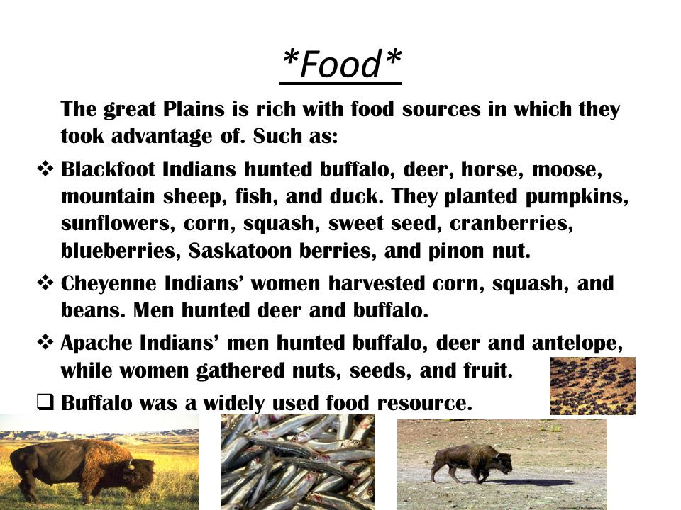 The Great Plains Indians - ppt download