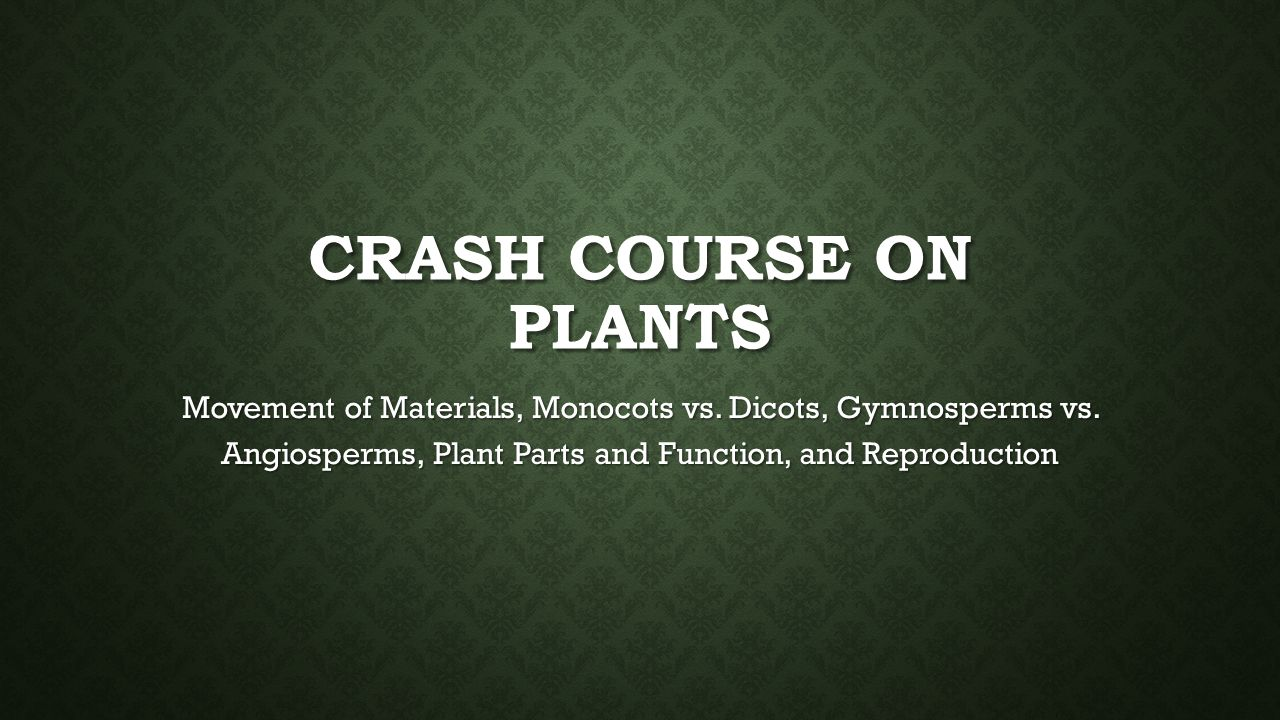 Crash Course on Plants Movement of Materials, Monocots vs.