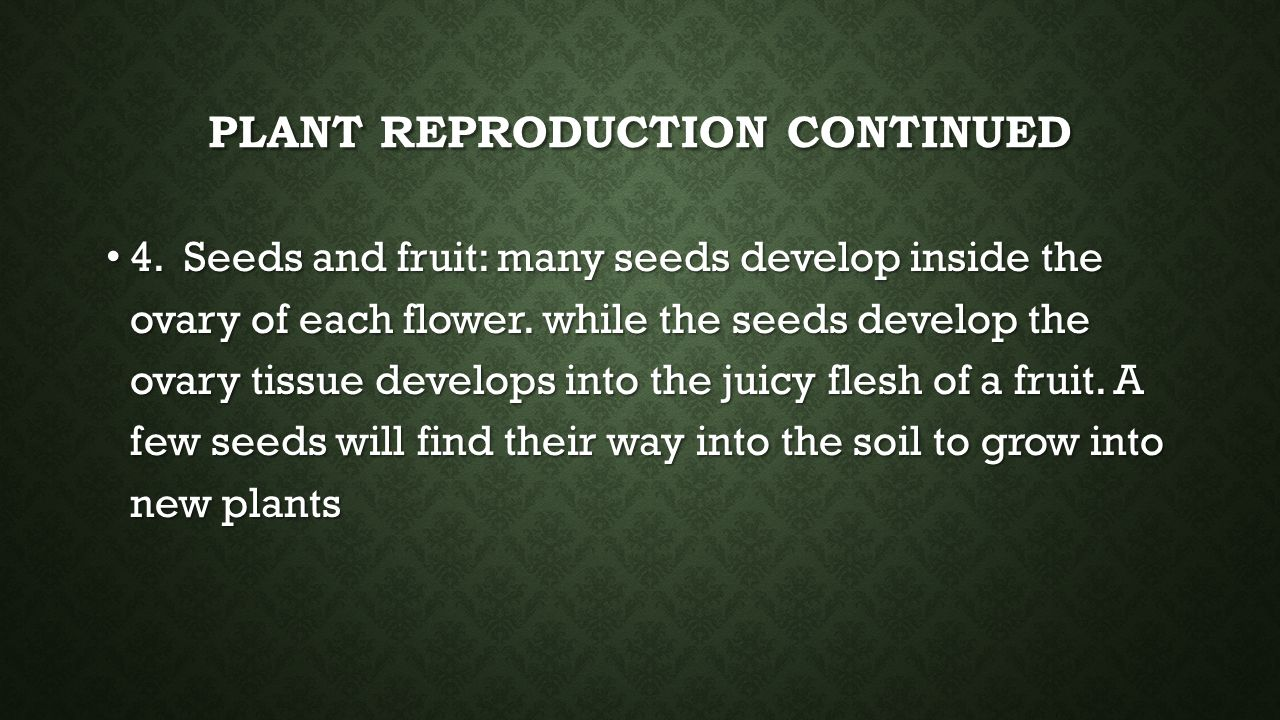 Plant reproduction continued
