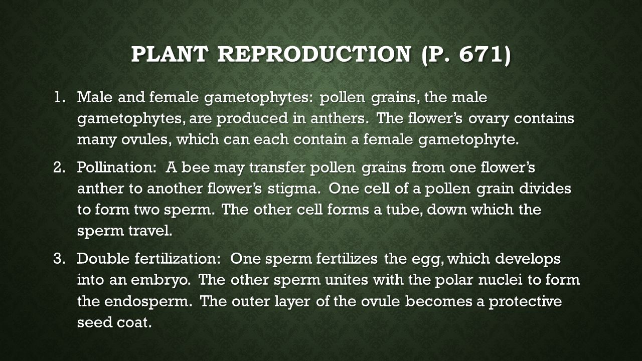 Plant Reproduction (p. 671)
