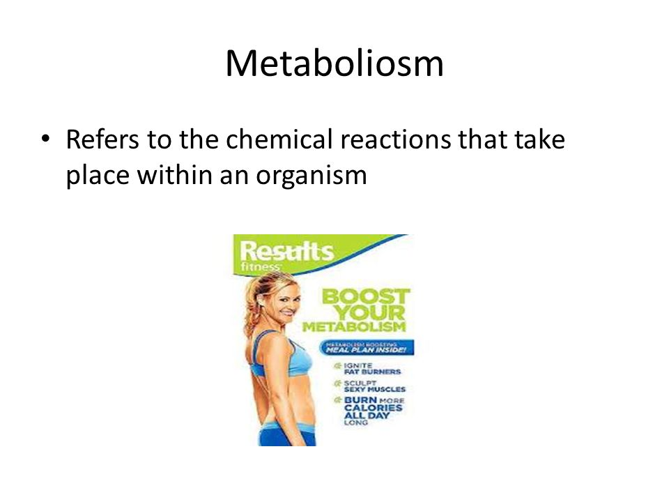 Metaboliosm Refers to the chemical reactions that take place within an organism