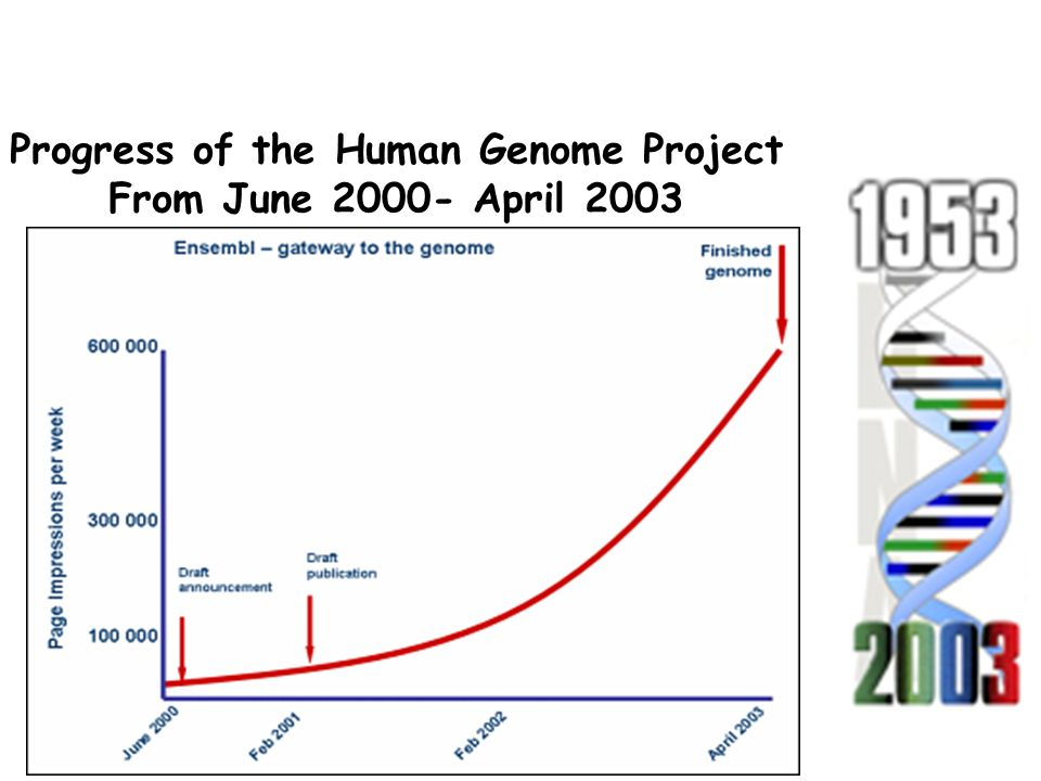Progress of the Human Genome Project