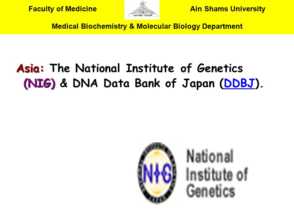 Asia: The National Institute of Genetics (NIG) & DNA Data Bank of Japan (DDBJ).