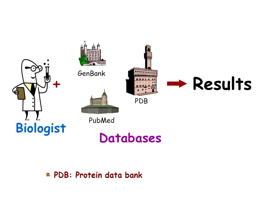 + Results Biologist Databases PDB: Protein data bank GenBank PDB
